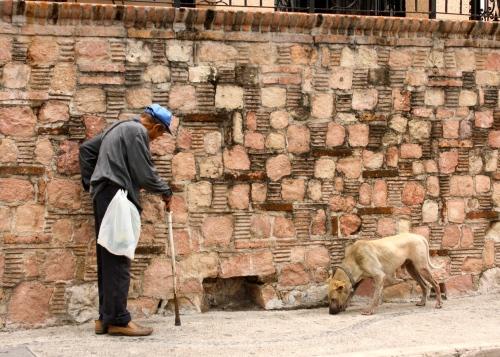 PV Man and Dog